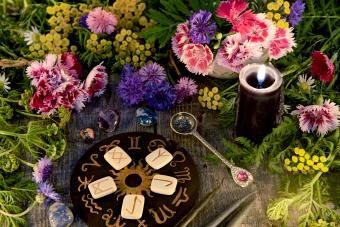 Bunga Zodiac Sign: Temukan Mekar Sempurna Anda