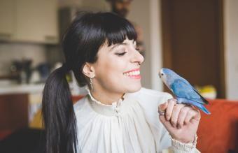 רשימה אולטימטיבית של שמות ציפורים נשיים